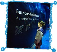 scheepvaart-museum-amsterdam